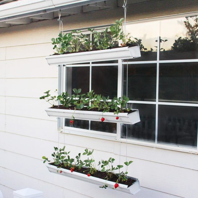 3 Tier Strawberry Planter: Build A Hanging Strawberry Planter In A Three-tier System