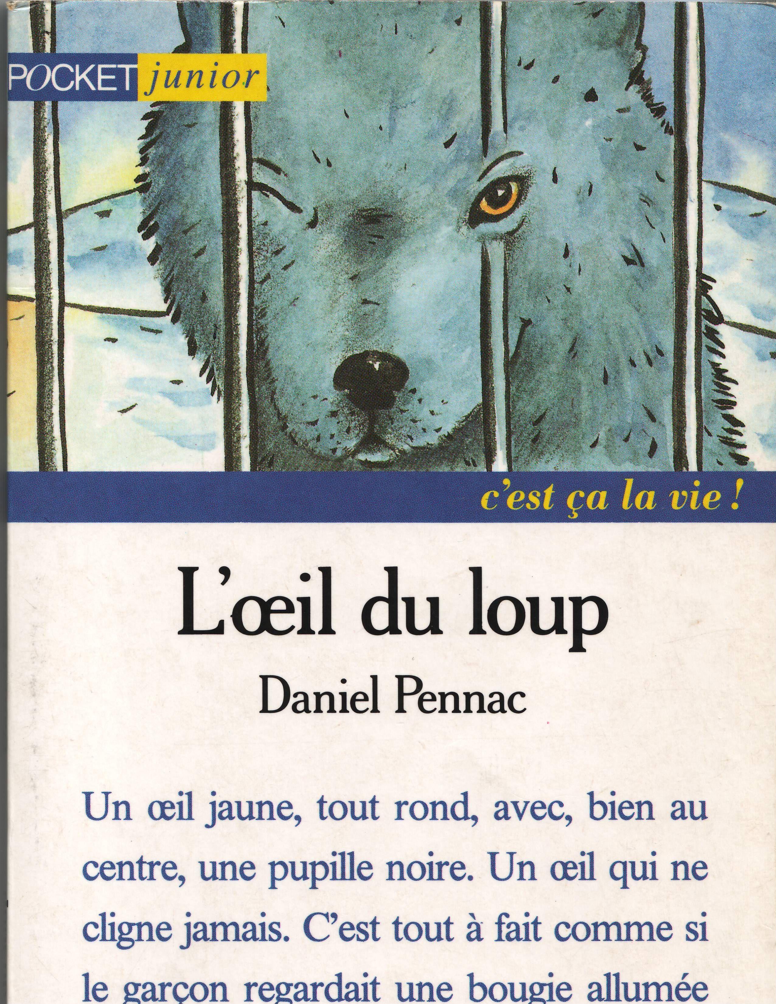 L'oeil Du Loup Telecharger Gratuit : l'oeil, telecharger, gratuit, L'oeil, Loup,, Yeux,, Thème, Classe