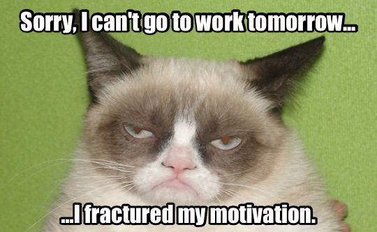 Management 101 With Professor Sauce Funny Grumpy Cat Memes Grumpy Cat Humor Grumpy Cat Quotes