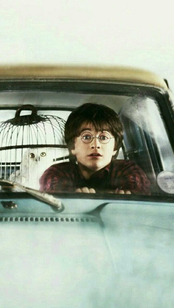 Fantastic Wallpaper Harry Potter Friend - f43efc199f1d1345fd972cbc4468dace  Image_232278.jpg