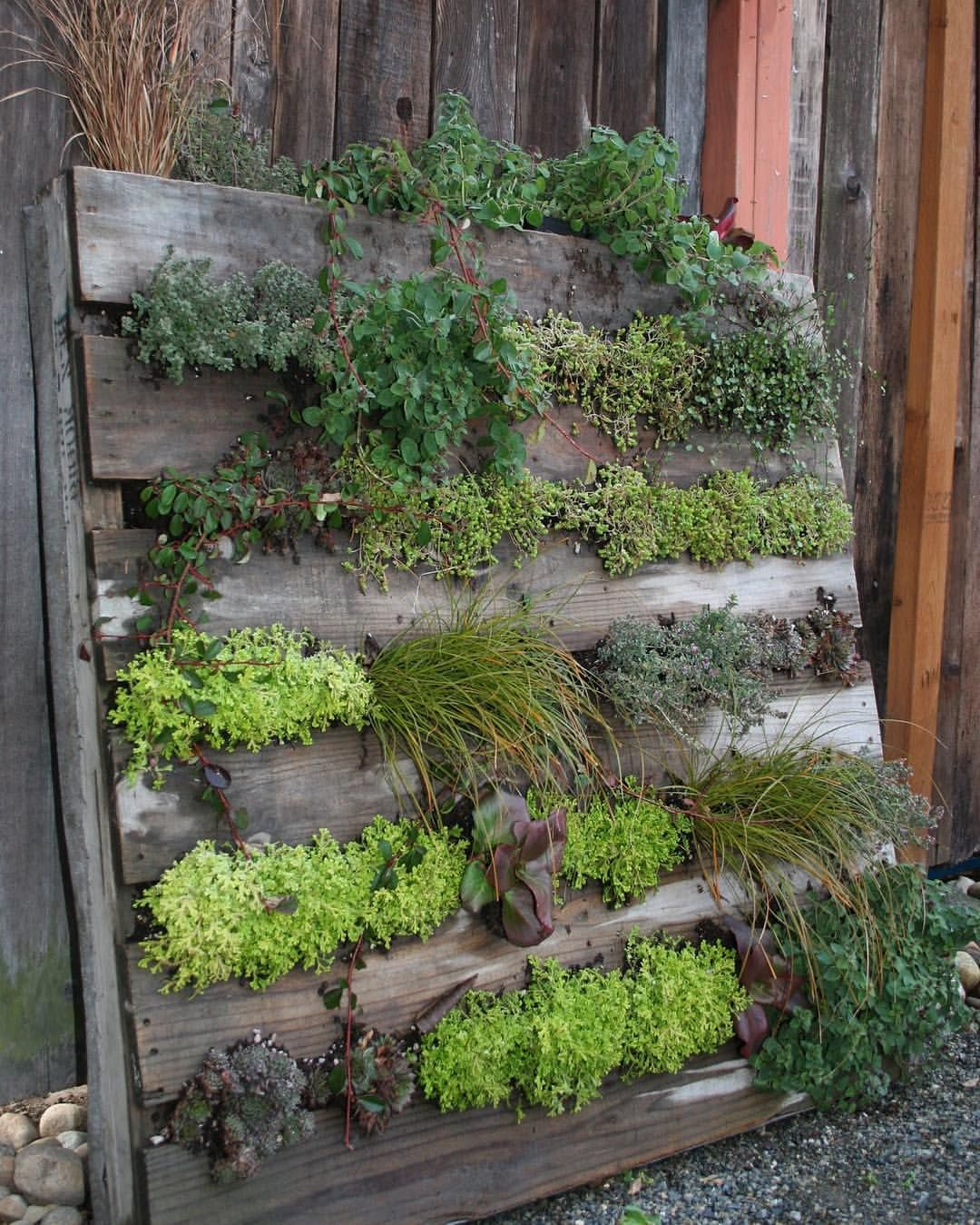 Don't Know What To Do With Your Pallets? Lettuce Give You