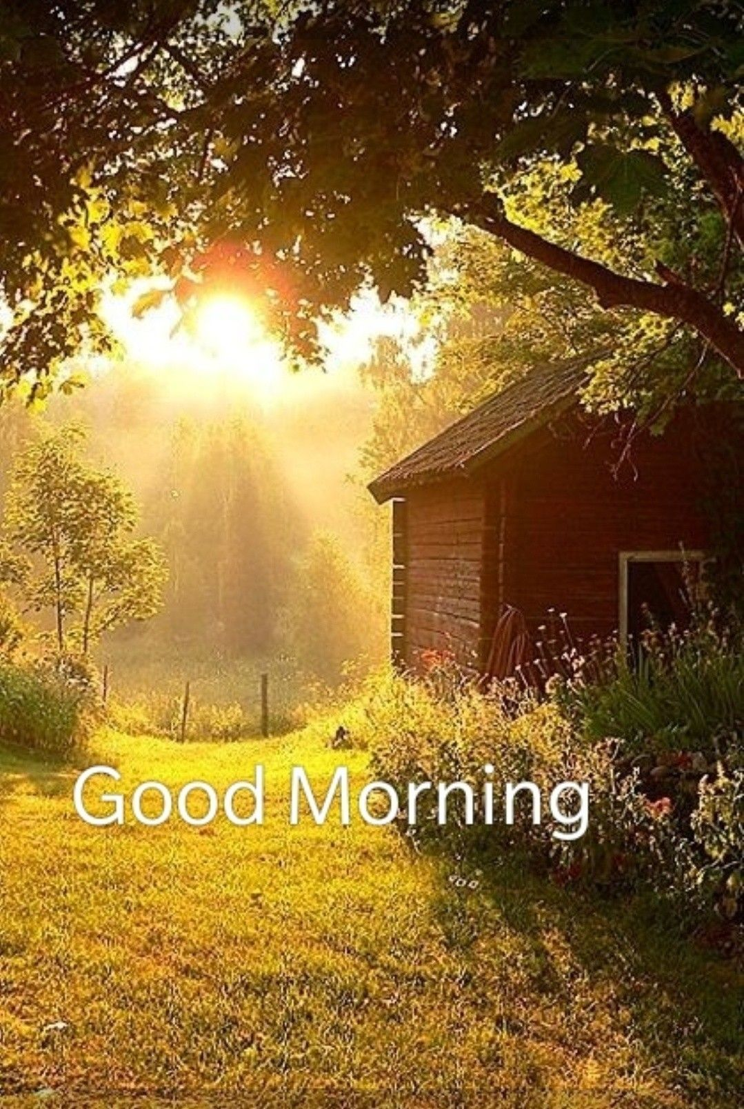 Good Morning Baby Can T Wait To See You Today Feels Like It Has Been Forever I M Good Morning Beautiful Images Good Morning Love Good Morning Quotes