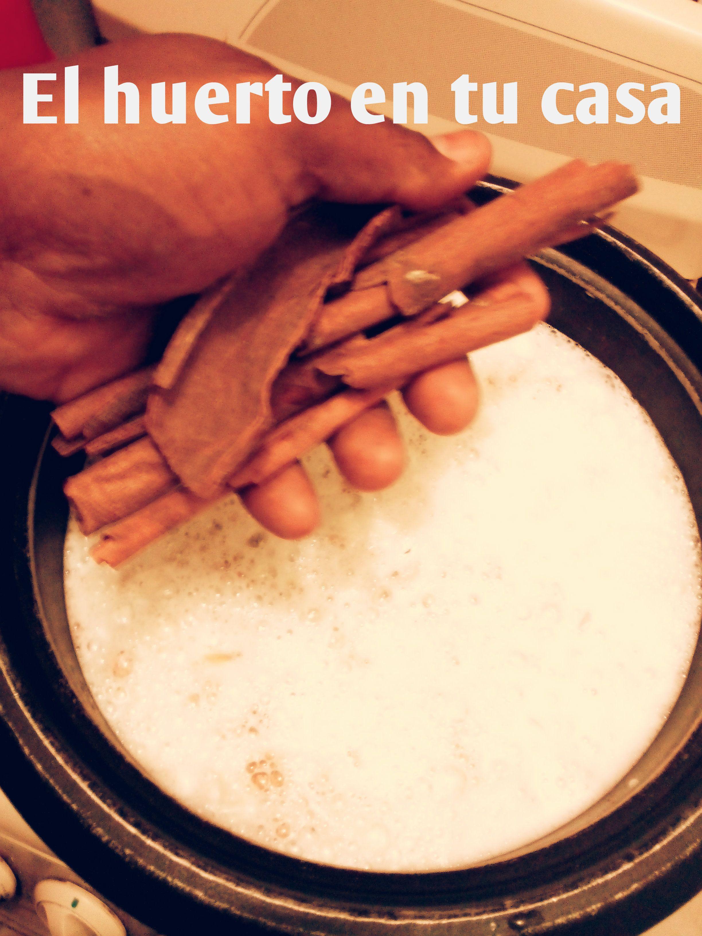 M s de 25 ideas incre bles sobre como eliminar moscas en - Como eliminar las hormigas de la cocina ...