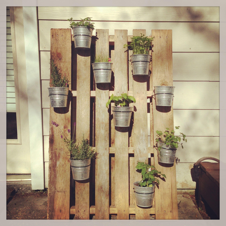 Kitchen Bench Herb Garden: My Girlfriend's Herb Garden!! I Love This Idea! Beautiful