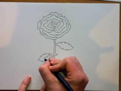 Comment Dessiner Une Rose Facile étape Par étape Tutoriel