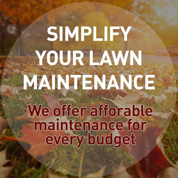 simplify your lawn maintenance  we offer affordable