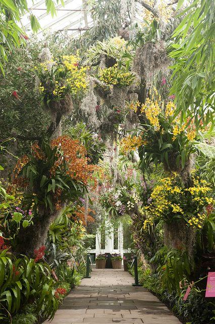 f440f93afd835c621290251adbf94581 - Atlanta Botanical Gardens Membership Promo Code 2019