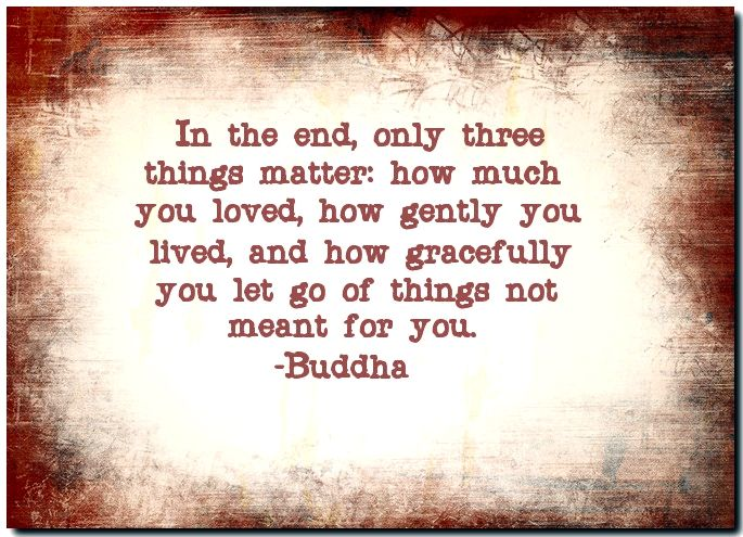 In the end, only three things matter: how much you loved how gently you lived, and how gracefully you let go of things not meant for you.-Buddha
