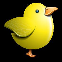 Twitter Yellow Bird Yellow Bird Bird Yellow