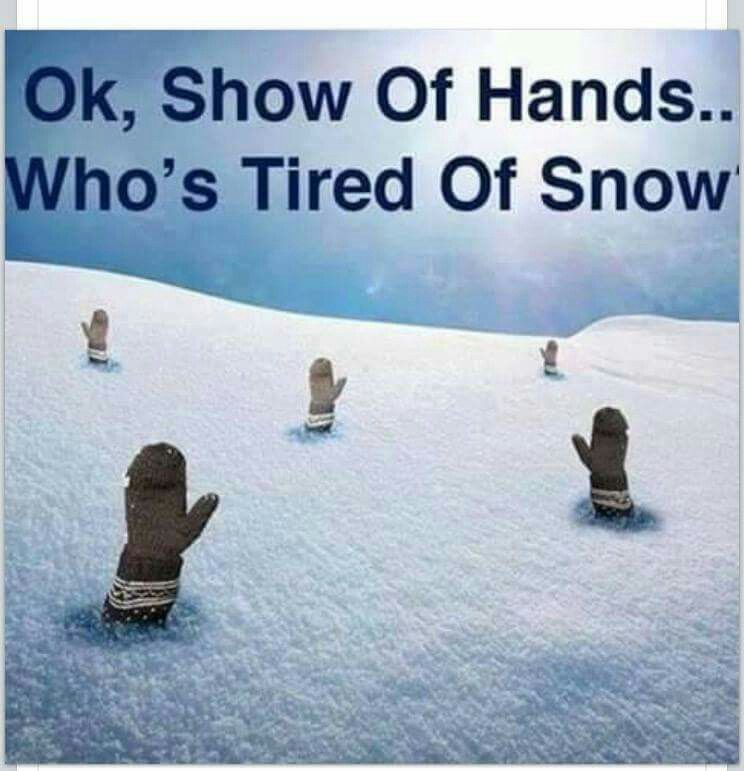 Ok Show Of Hands Who S Tired Of Snow Weather Memes Winter Humor Show Of Hands
