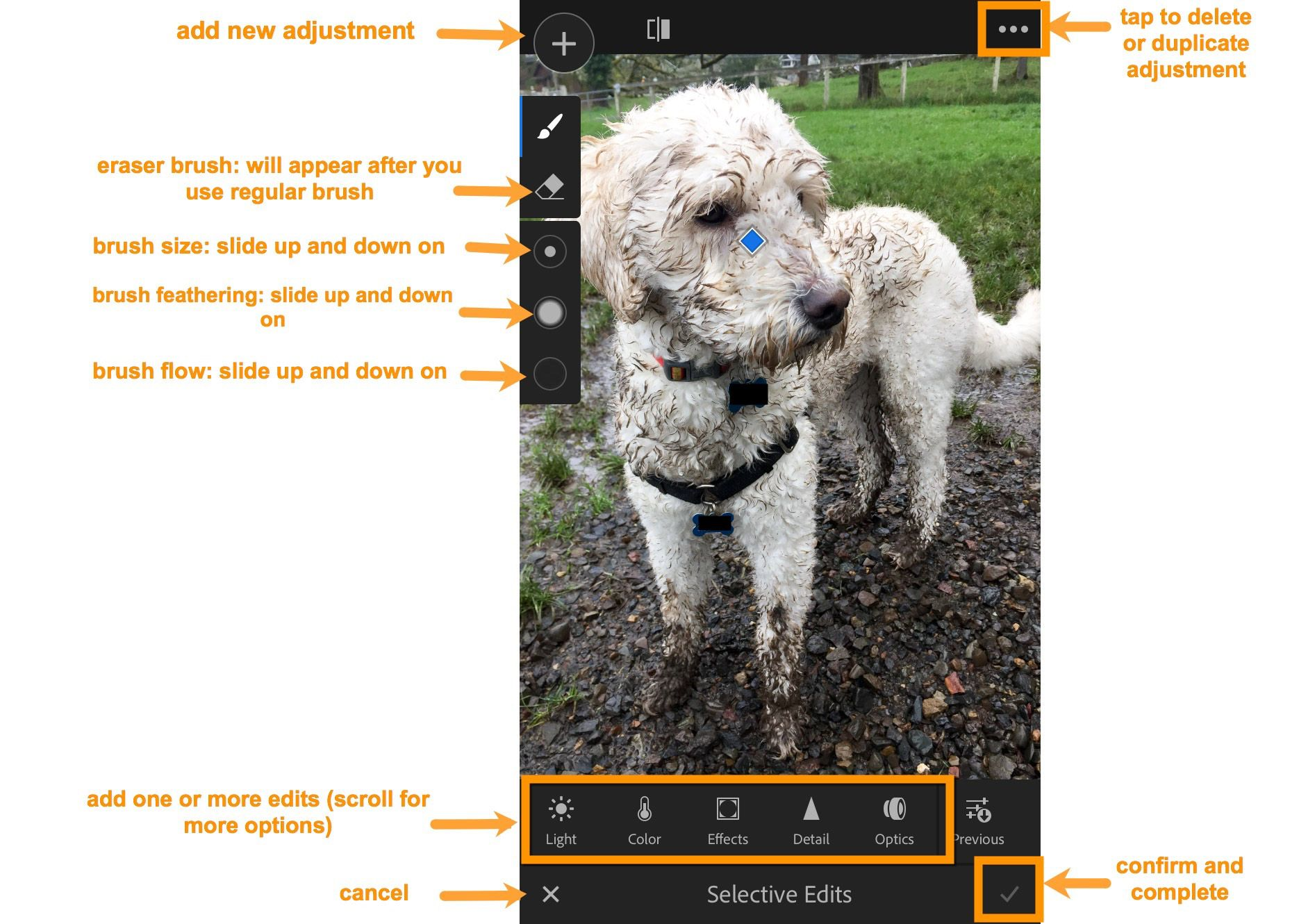 Adobe today released Lightroom mobile 2.8 for iOS and 3.0