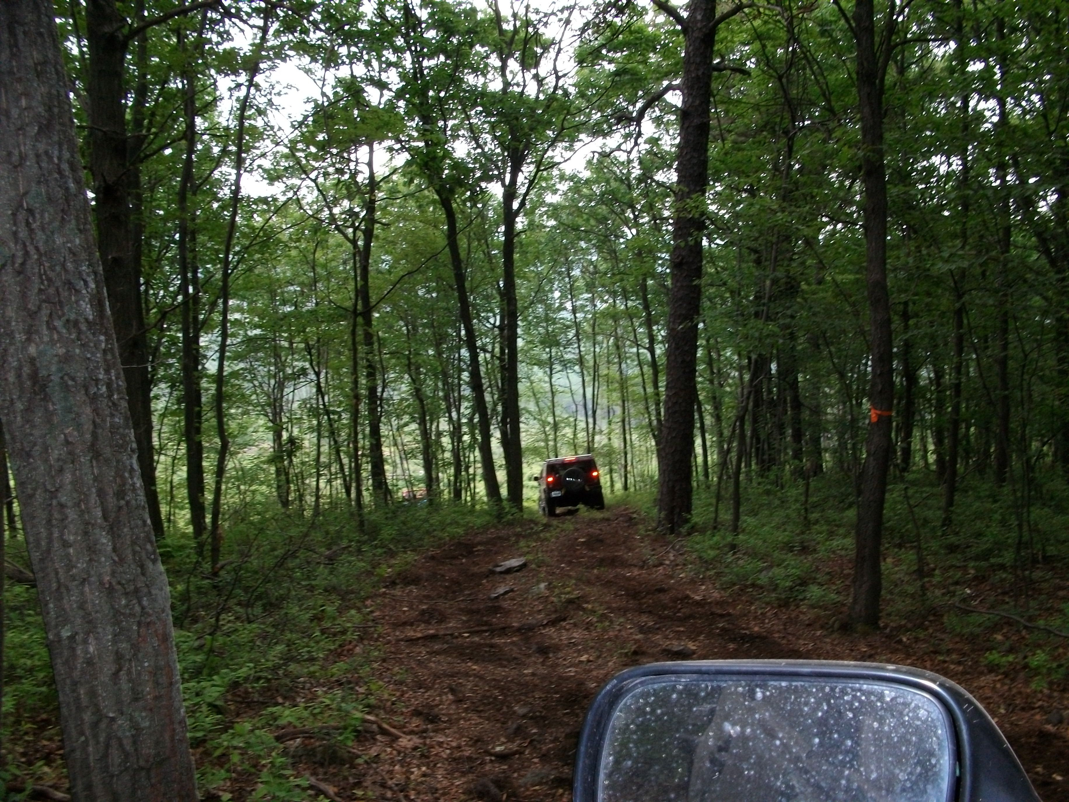 over hills and thru the woods we go!!