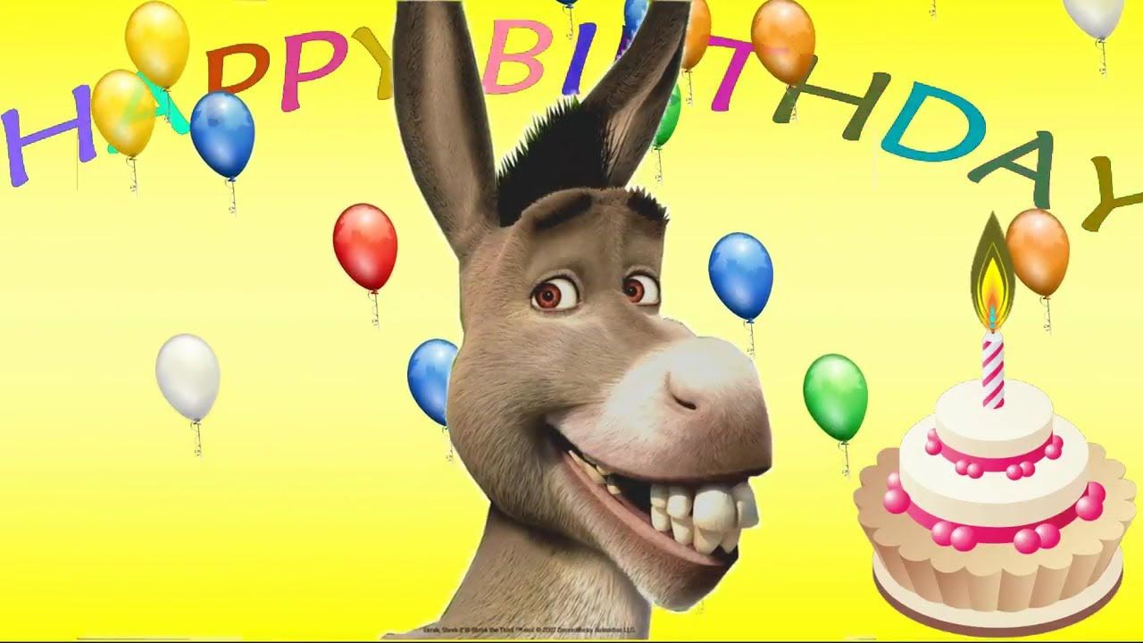 Donkey's Happy Birthday Song funny song for children