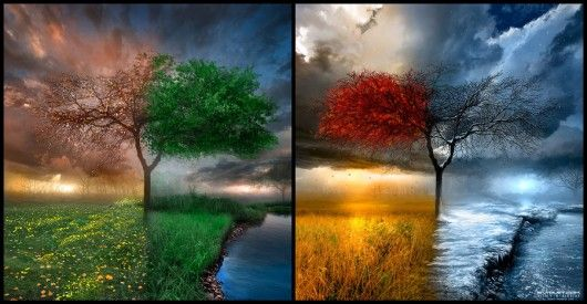 Seasonscape, posted by:light