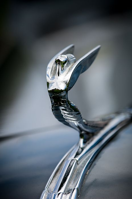 1936 Desoto Airstream Hood Ornament - Car Images by Jill Reger...Re-pin brought to you by agents of #Carinsurance at #HouseofInsurance in Eugene, Oregon