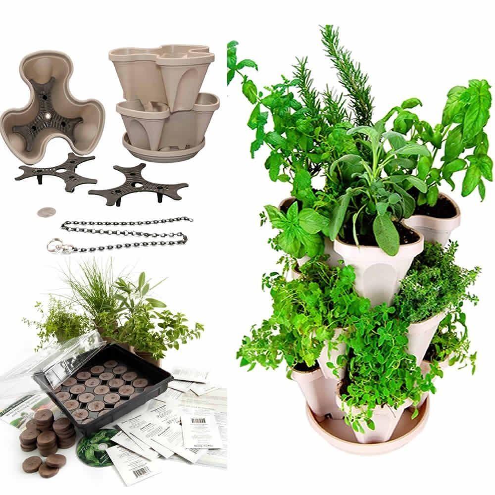 Living Whole Foods Culinary Herb Garden Starter Kit Mini Garden