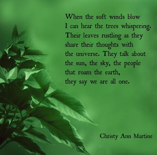 We Are All One Poem By Christy Ann Martine Poetry Poems Nature