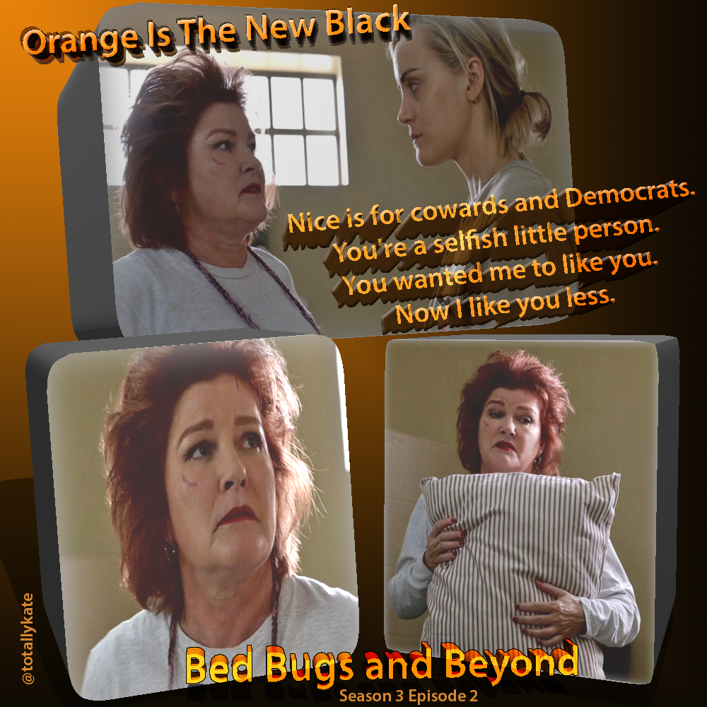 OITNB Season 3 Episode 2 Bed Bugs and Beyond   Orange Is The
