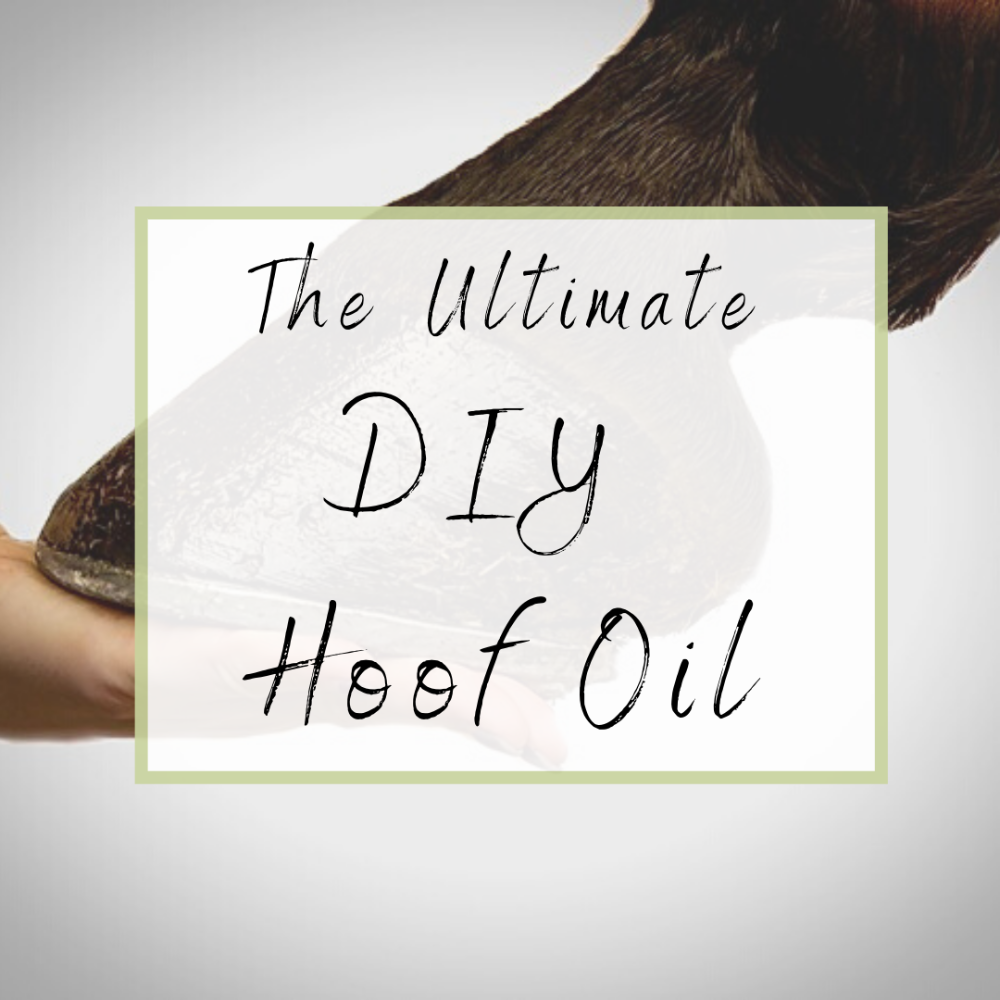 The Ultimate Diy Hoof Oil In 2020 Hooves Horse Care Tips Hoof Care