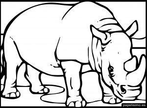 Dibujo Rinoceronte Para Colorear Ninos Animalitos Para Colorear Colorear Para Ninos Animales