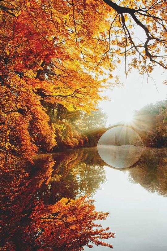 Sweater Weather in 2019 Autumn, Autumn day, Autumn morning