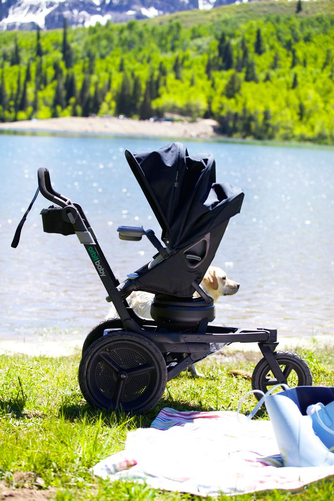 Mountain Air Orbit baby, Baby strollers, Mommy style
