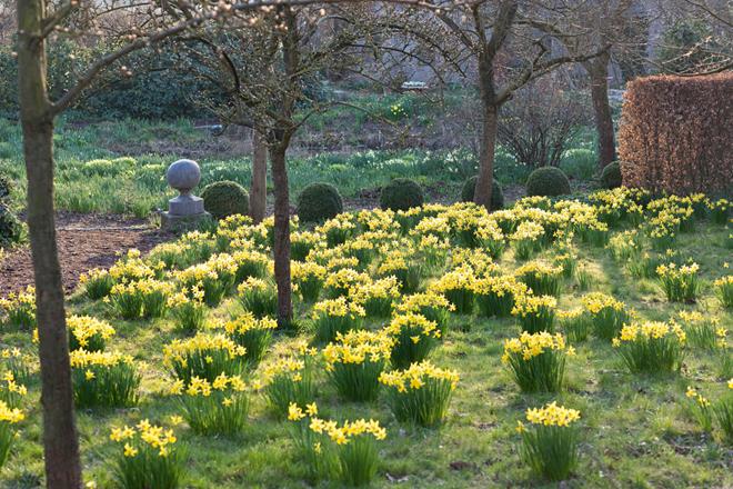 Easter Garden in Denmark  #easter  #ostern #dänemark