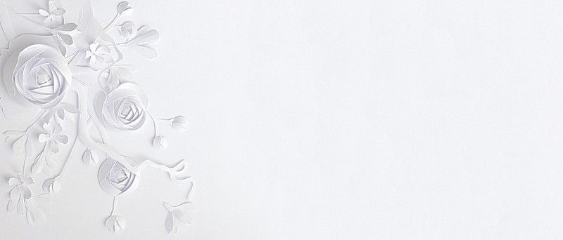 Simple White Paper Flower Background In 2020 Flower Backgrounds