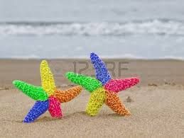 starfish real - Google Search