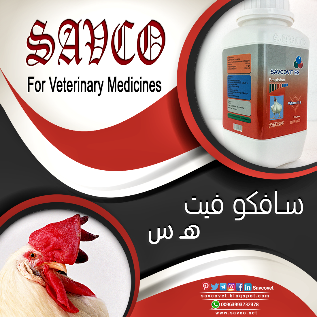 Pin By Savco For Veterinary Medicines On منتجات وأصناف دوائية Mycoplasma The Cure Medicine
