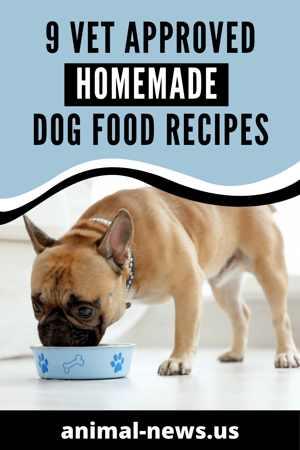 9 Vet Approved Homemade Dog Food Recipes for a Thriving Pup #Vet Approved #Homemade #Crockpot #Fish #Raw #Grain Free #Chicken #Easy #Healthy