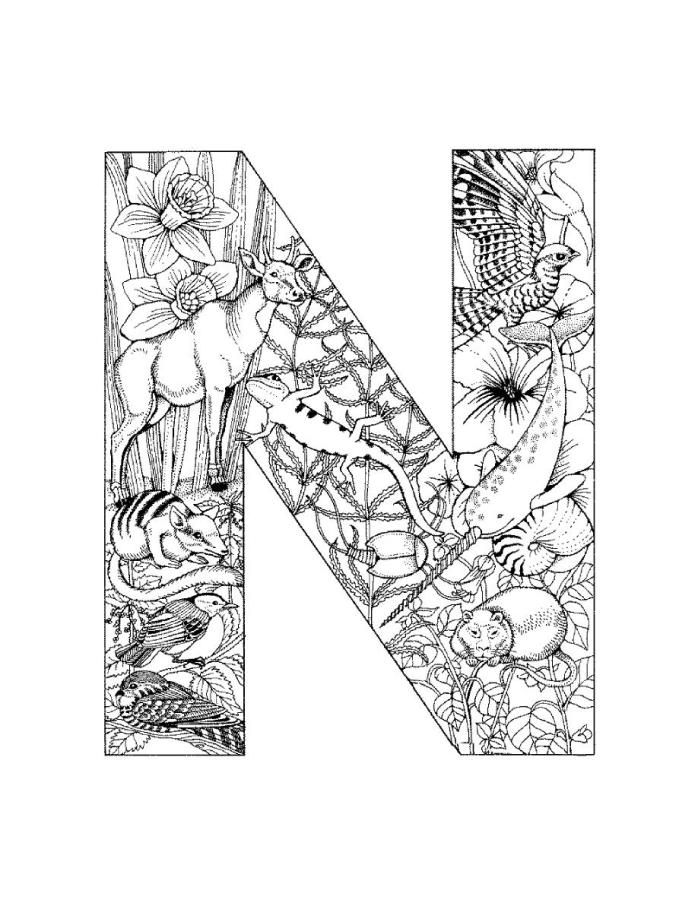 alphabet coloring pages - N Coloring Page