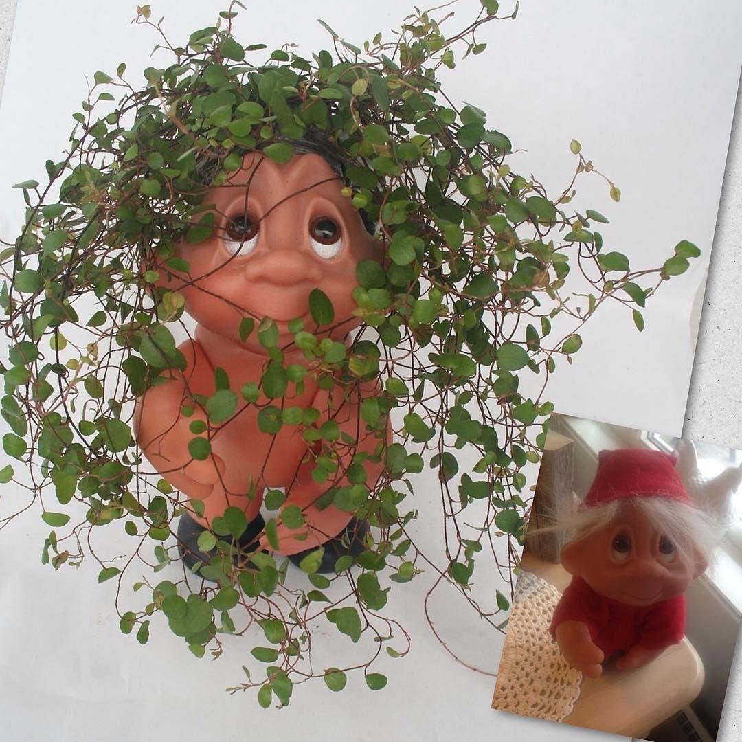 Troll flowerpot #flowerpot #troll #gjenbruk #brukogikkekast #återbruk #nordiskaträdgårdar #nordiskahem #nordiskehjem #skandinaviskehjem #skandinaviskahem #rom123#kkliving#taramagasin #detnyeinteriør #boligplussplanter #flowerpot #flower#outdoorliving#norskehjem#loppis#loppemarked #veranda#redesign#upcycle #diy#homemadebylise74 #gjørdetselv #gds by homemadebylise74