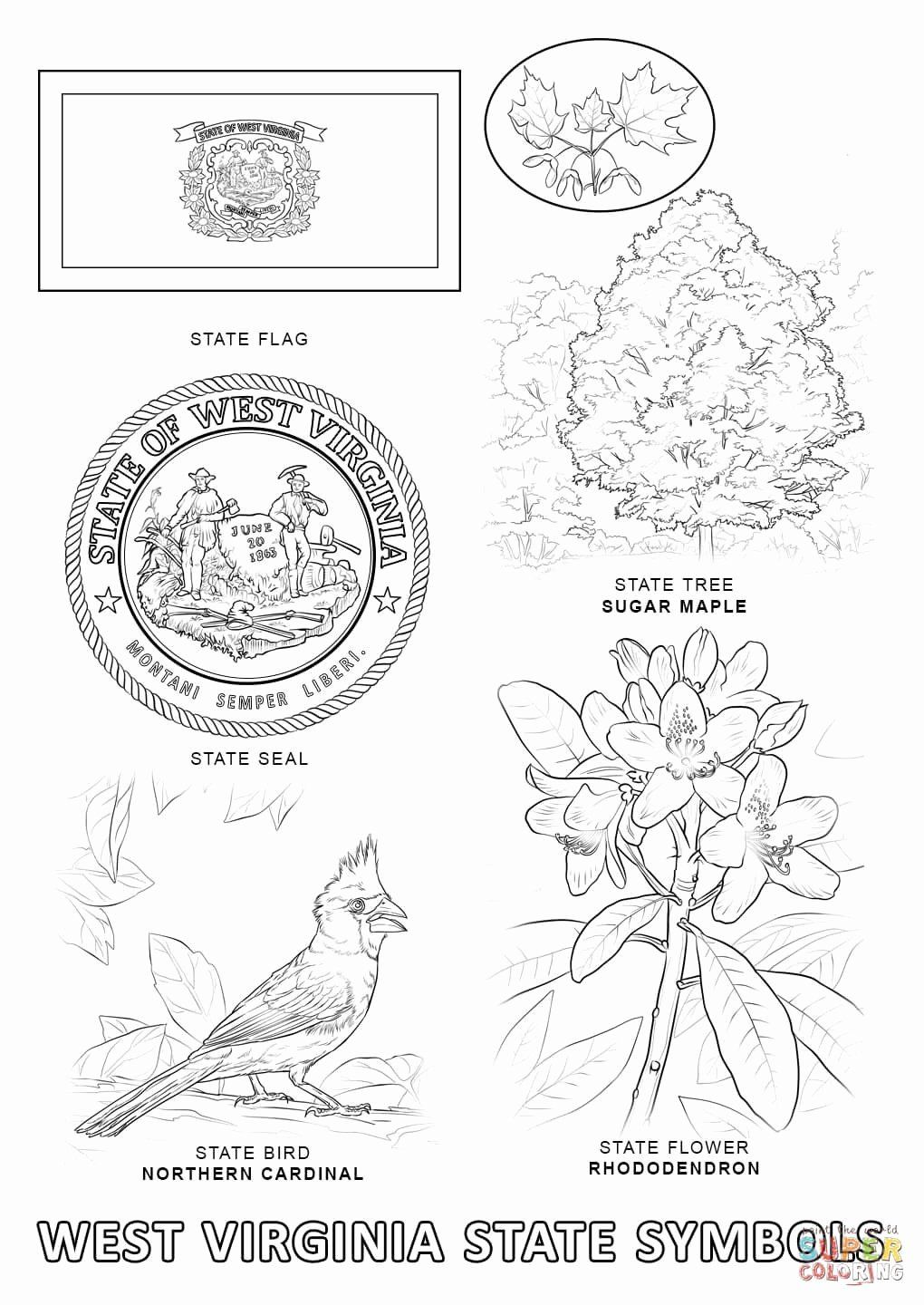 Maryland Flag Coloring Page New Delaware State Flag
