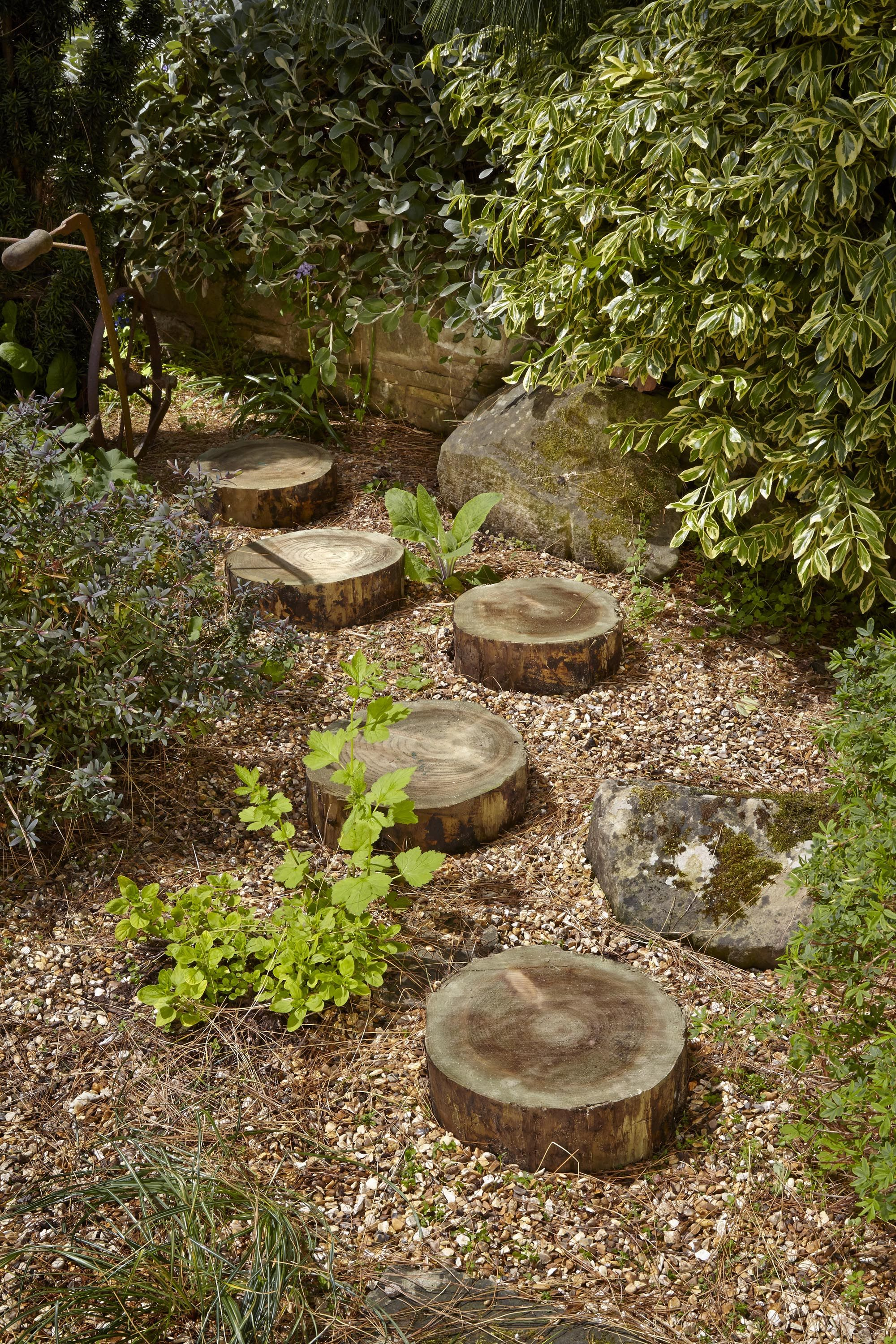Forest Garden\'s stepping logs are perfect for creating a decorative ...