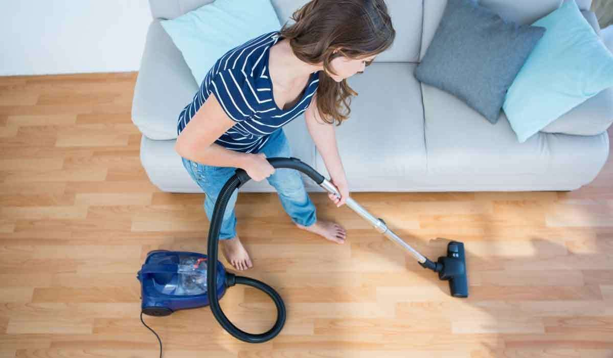 Switch To A Pet Vacuum To Get Rid Of Pet Hair Dander From Your Carpet Apartment Cleaning Clean House Professional House Cleaning