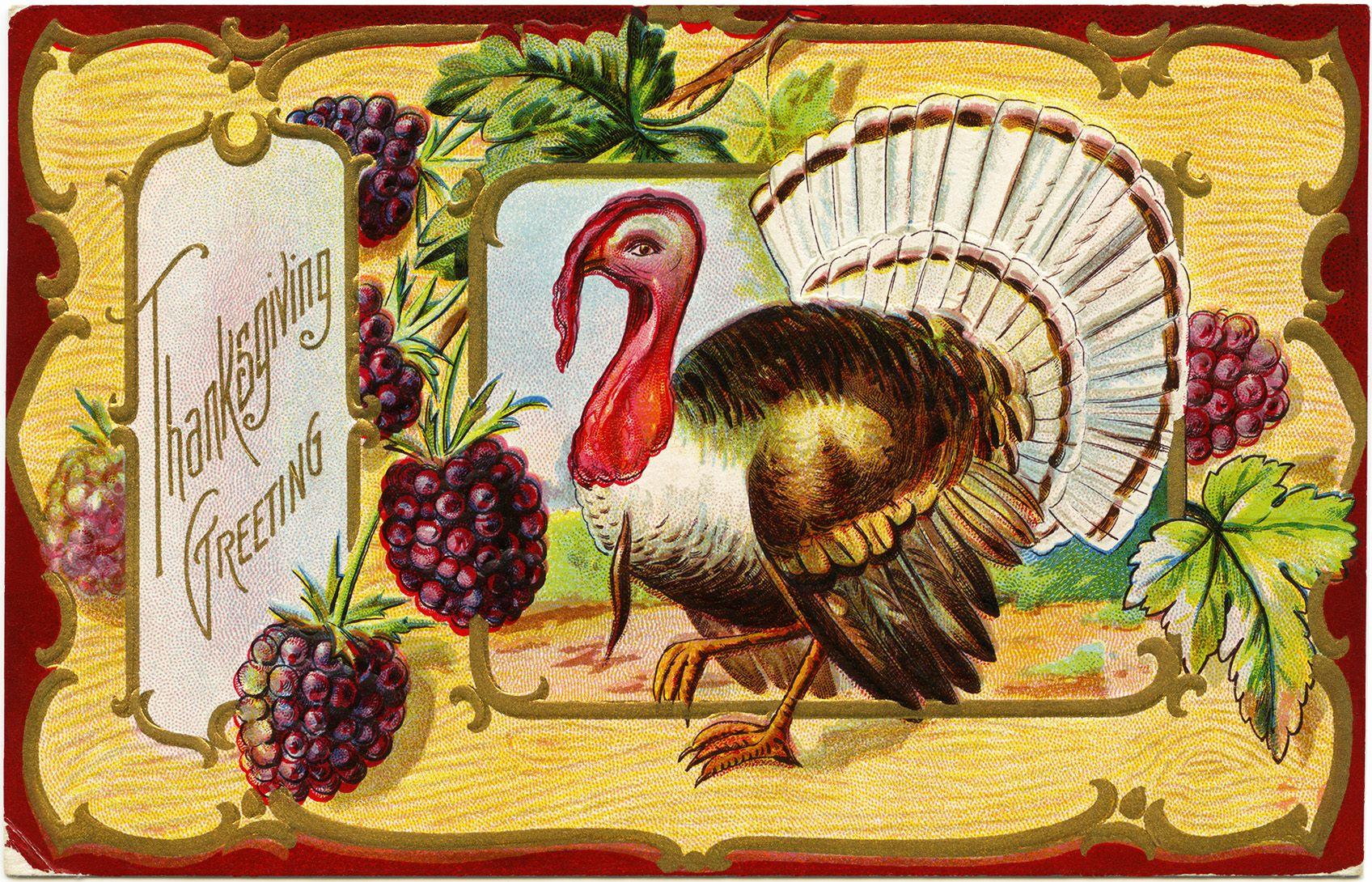antique Thanksgiving postcard, turkey clip art, Victorian