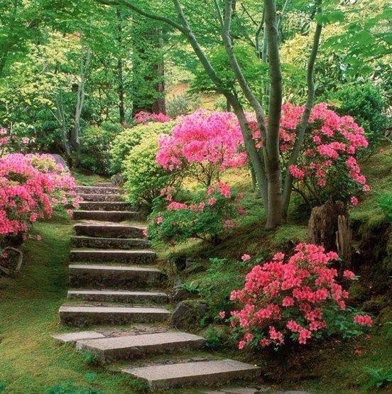 Early American Gardens Beautiful Flowers Garden Backyard
