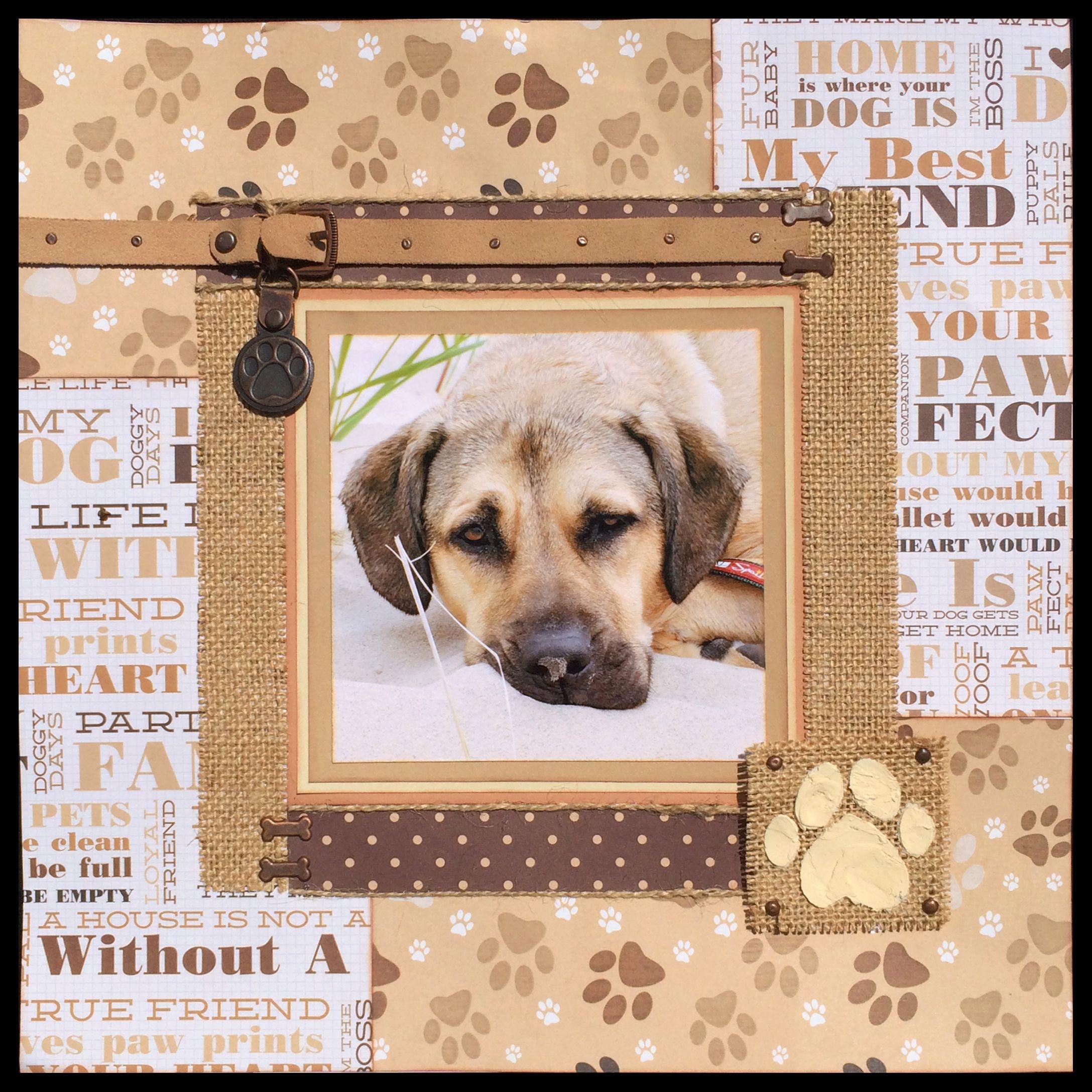 Scrapbook ideas for dogs -  Ver 1 000 Bilder Om Pet Scrapbook Layouts P Pinteresthundar Layout Och Scrapbookinglayouter
