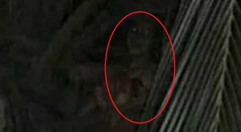 Netizen Digegerkan Penampakan Kuyang Gambar Hantu Gambar Hantu