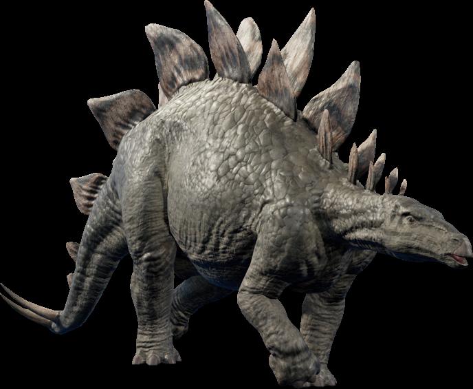 Stegosaurus. | Dinosaur images, Stegosaurus, Prehistoric animals