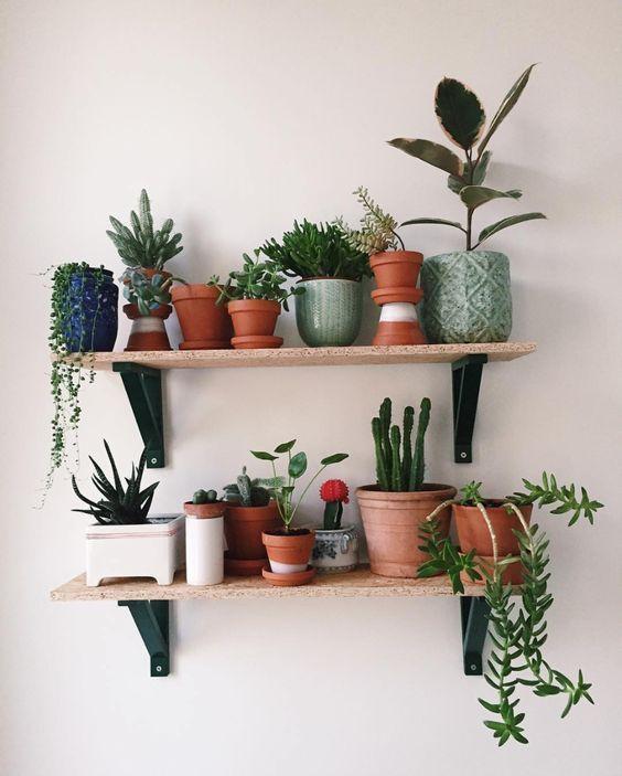 Indoor plants wall decors diy plant decor living room interior home decorations also rh pinterest