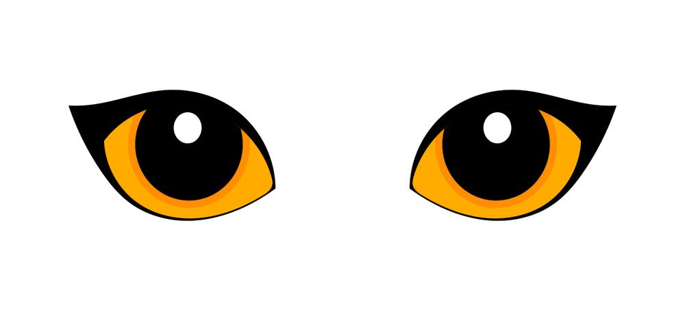 Orange Cat Eyes Isolated On White Orange Cat Cats Orange