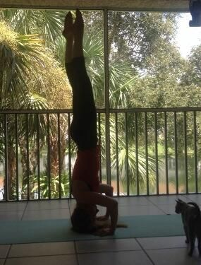 myyoga yogapose yogabenefits headstand multifaceted