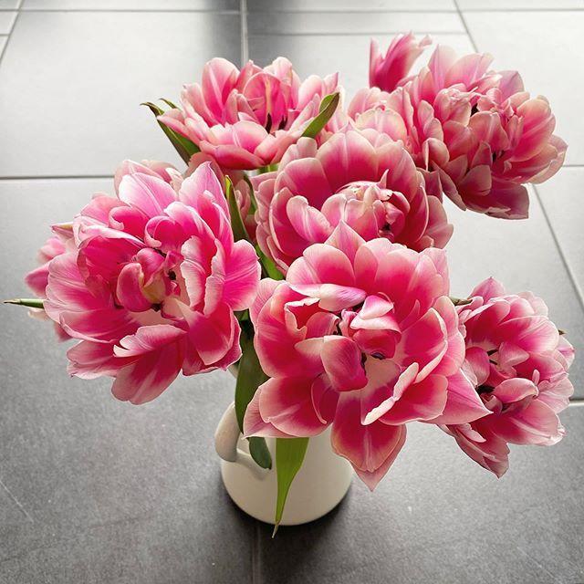 Was mich gerade glücklich macht: Blümchen in der Vase 💕   Und euch?  #happyfreitag #tulpenliebe #gefülltetulpen #instaflowers #blumenmachenglücklich #wirbleibenzuhause #alleswirdgut