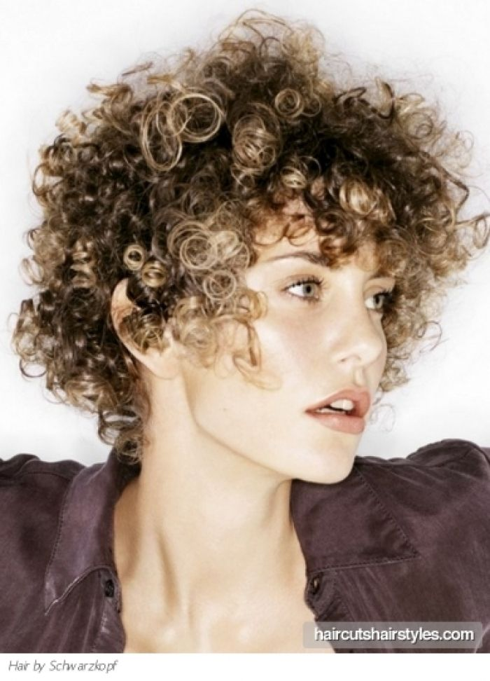 Voguish Short Curly Hair Style