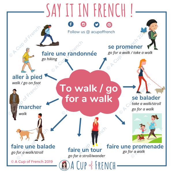 Mes élèves ont souvent du mal à différencier les verbes : se promener, se balader, etc. Voici donc une infographie pour vous aider à les utiliser.