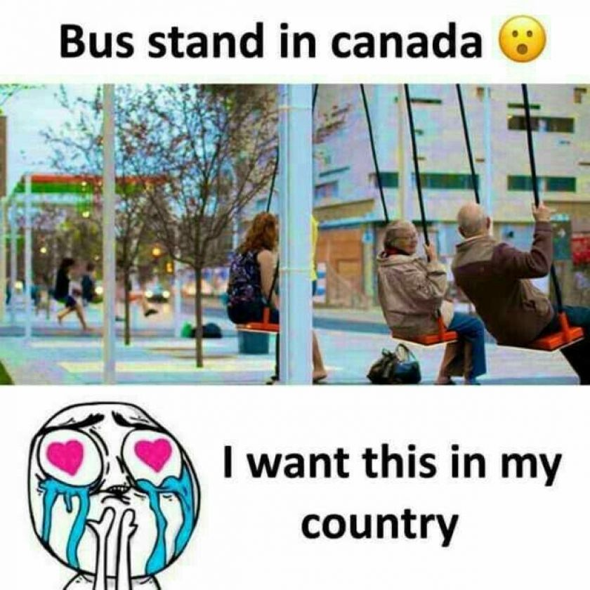 Bus Stand In Canada Really Funny Memes True Interesting Facts Unbelievable Facts