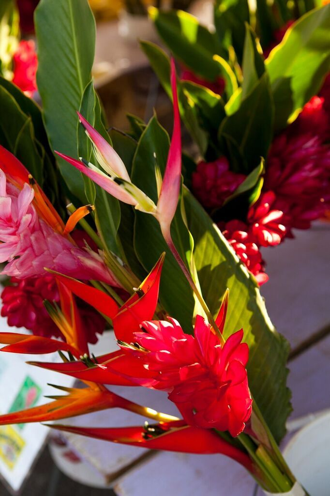 Birds of Paradise... island floral inspiration for a destination wedding in Hawaii