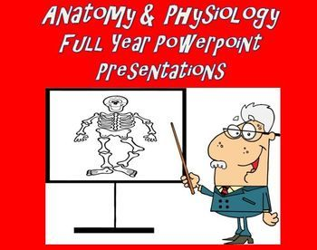 Anatomy and Physiology | PowerPoint Presentations Full Year Bundle
